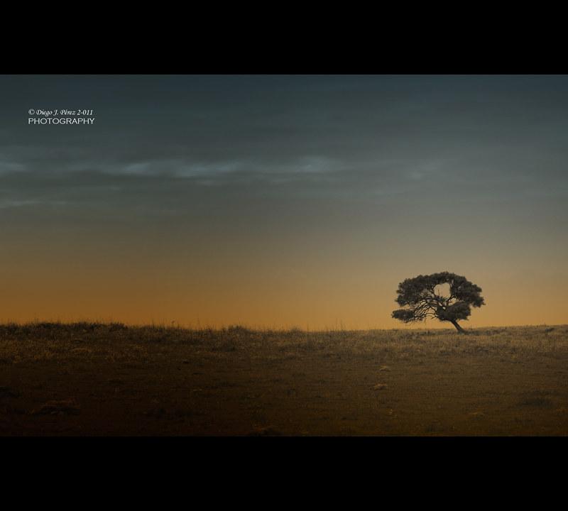 ALONE AT THE HORIZON by Diego Ceuta - www.diegojperez.com