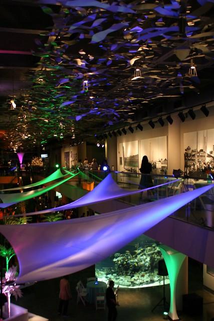 Charleston Aquarium Event