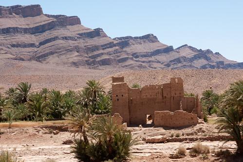 africa oasis morocco berber maroc maghreb zagora oases kasbah agdz westernsahara tamnougalt dra zawiya tamegroute dadès imini oueddraa tagounite draâ soussmassadraâ tinzouline almaġrib المغرب amezrou m'hamid tamezmout seguias qatarra
