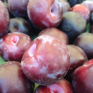 Plum time. | by Club Dine In!