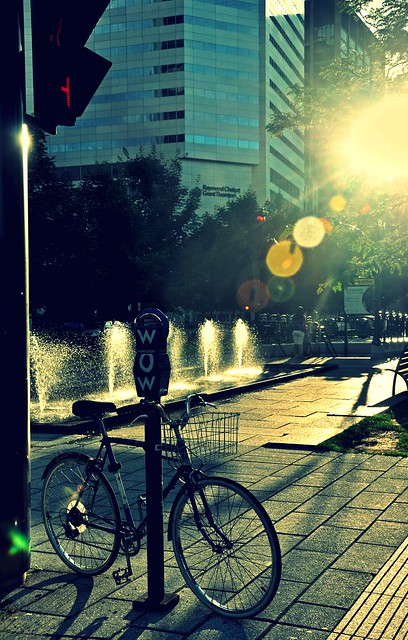 Summer Light of Montréal