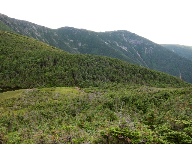 5:09:08 (86%): hiking newhampshire whitemountains franconianotch mtlafayette mtlincoln greenleaftrail franconiarange