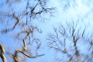 Little too Much Beer - A circular blur caused by a long exposure creating a disoriented drunk   by Homeandgardners