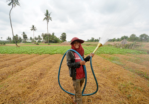 NP cambodia57_2