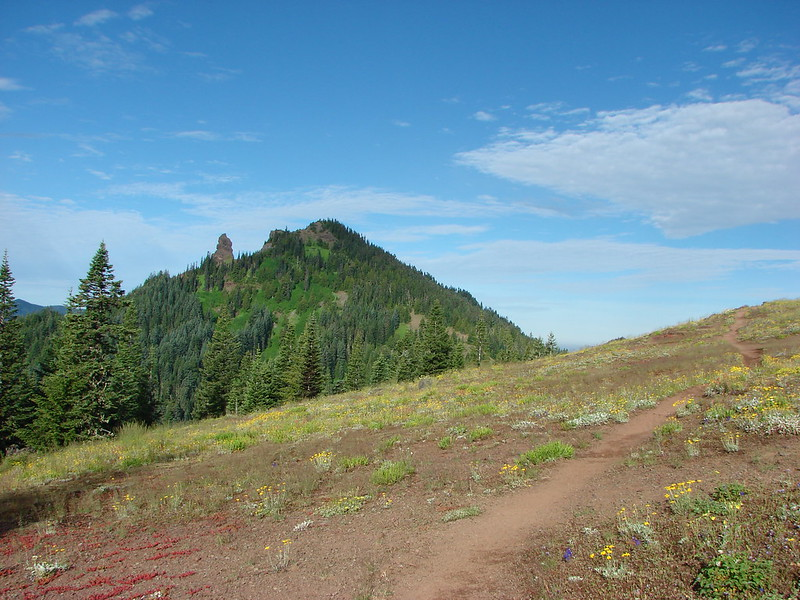 Iron Mountain from the Cone Peak Meadow