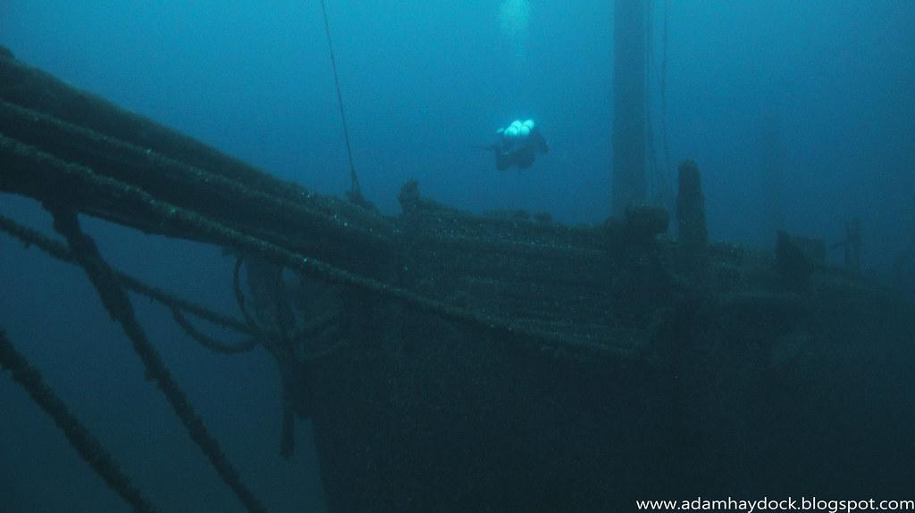 TYPO SHIPWRECK