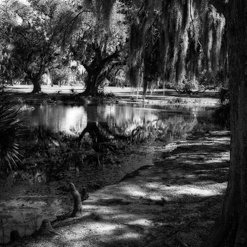 sony rx100 citypark new orleans louisiana bw monocrhome shadows reflection square lucymagoo lucymagooimages nola travel monochrome neworleans blackandwhite