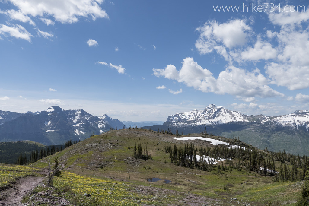 Swiftcurrent Lookout Early 2015 Hike 734