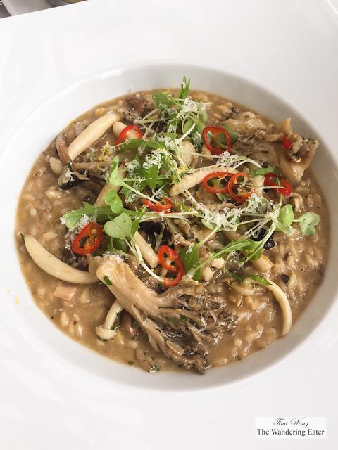 Wild Mushroom Risoto - Carnaroli Rice, Porcini Broth, Taleggio, Truffle Butter