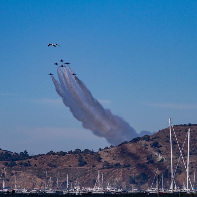 Fleet Week SF Airshow 2016: dibble coccolith