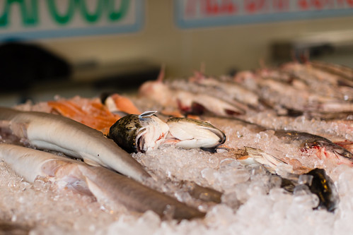Maine Avenue Fish Market Fish | by Mr.TinDC
