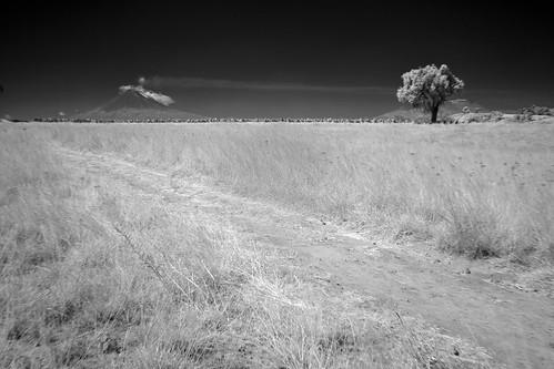 Las que se quedaron en el camino (2010) 13