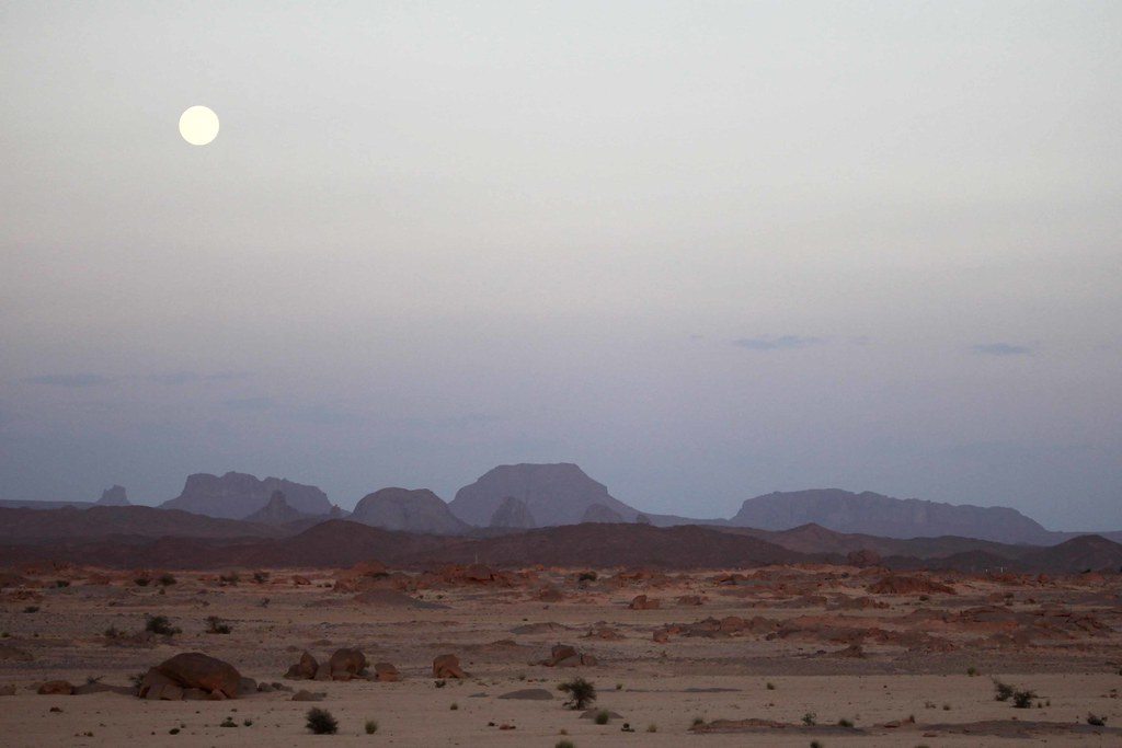 101230 Touareg festivals, scenery draw tourists to Algeria… | Flickr