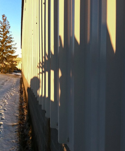 winter sunset shadow snow hand optical wave illusion