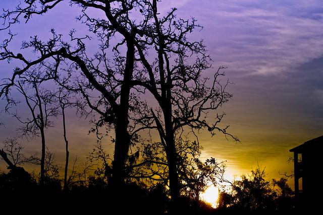 Bay Area Texas Sunrise