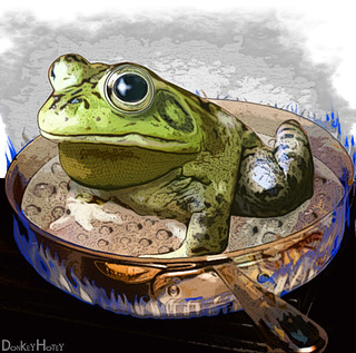 Boiling Frog | by DonkeyHotey