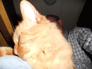 Breeze on my lap