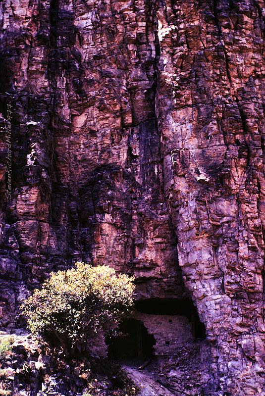 CliffDwelling1977#36Sim.11