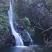 Shorter Maui, December 2010