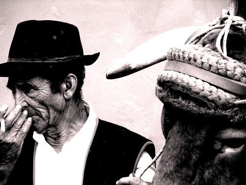 Roberto Da Silva El fiel compañero Romeria. Garachico tenerife 2010