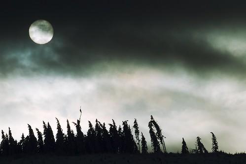 schnee winter wolken sonne schatten ilmenau lindenberg thüringen bäume ef70300mmf456lisusm