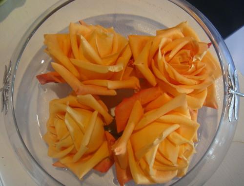 Christmas-roses   by GaryAScott