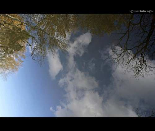 autumn trees sky reflection fall nature water clouds pond thegalaxy springvalleynaturesanctuary
