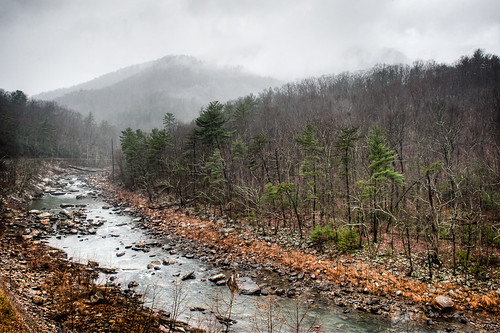 trees mist mountains water rain fog clouds forest river woods rocks hdr goshenpass