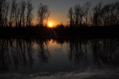 reflections landscapes illinois nikon midwest sundown sunsets pinoy lakecounty silhouttes naturescapes chicagoist desplainesriver manualmode d90 wetreflections northernillinois handheldshot sooc lakecountyforestpreserves perfectsunsetssunrisesandskys setholiver1 aperturef160 18105mmnikkorlens circularpolarizers 0005secondexposure lateautumnseason wadsworthgurneeillinois gurneewoodsforestpreservekayaklauncharea