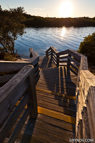 park wood sunset sun reflection texture nature water stairs warm stairway ladscape canonefs1022f3545