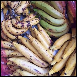 Bananarama. #Taiwan #Nantou #Caotun #fruit #banana #台灣 #南投 #草屯   by ToddinNantou