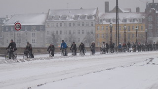 Copenhagen Winter Cycling - The Bridge Winter Traffic   by Mikael Colville-Andersen