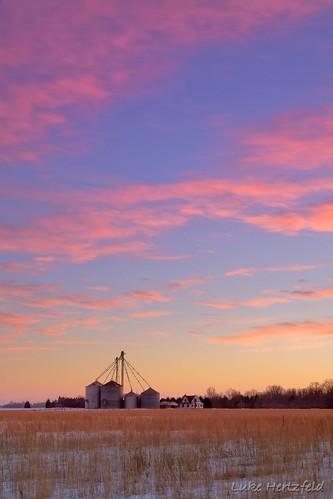 trees winter sunset ohio house snow color ice grass clouds rural farm elevator grain grasses whitehouseohio