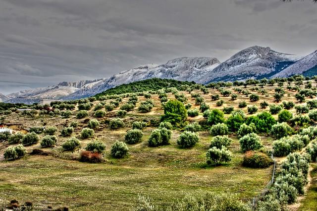 Sierra Arana3