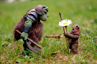 Gamorrean Vs. Ewok | by DocChewbacca