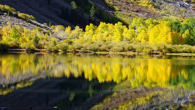 Fall colors reflected on Parker Lake