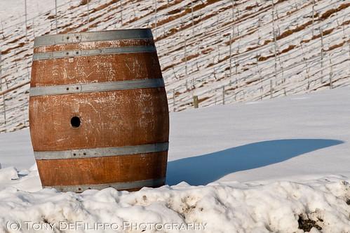 sunset shadow usa snow weather virginia vineyard barrel va grapes dcist vawinecountry we3dc potomacpointwinery nikon10525aid