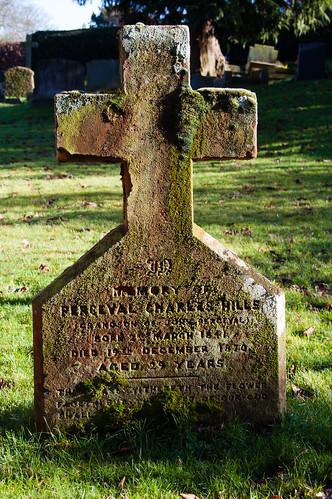 Lichen: Beckbury graveyard