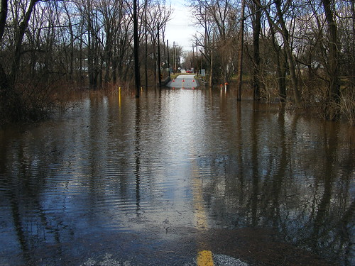 water river flooding flood rainstorm streams roadclosed banks schuylkill overflowing schuylkillriver