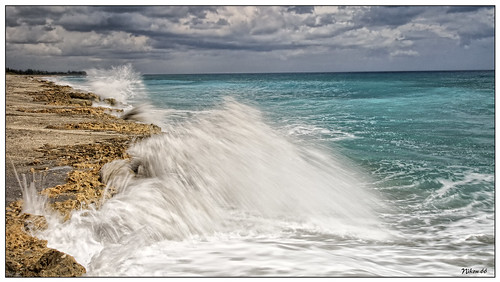 nikon florida d300 jupiterisland blowingrockpreserve 1424mmf28nikkor ©copyright