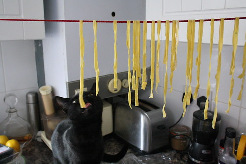 uhoh, never leave drying pasta unattended..