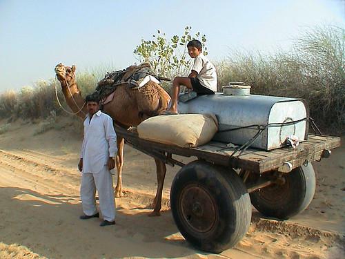 Rádžasthán – na velbloudu, pěšky i rikšou1. díl