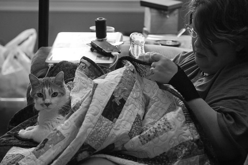 John Wilson got this photo that pretty much sums up my life. That's me, in my usual spot on the couch, working on binding a quilt. Nearby are my laptop, phone, thread, remote control, and empty ice cream container.  Tenzing is claiming the quilt as his. After all, ALL quilts are his.