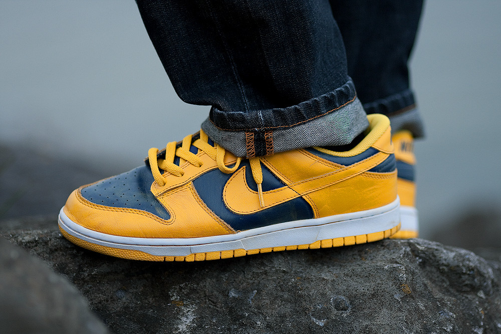 new style 77ae1 0b043 Nike Dunk Low