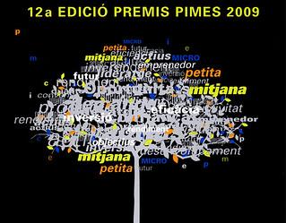 Premis Pimes 2009