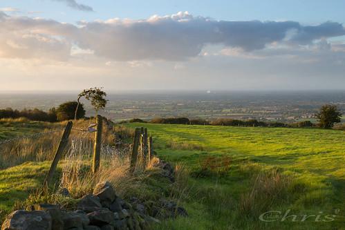 mowcop cheshireview landscape plain cheshireplain field tree sunset view goldenhour