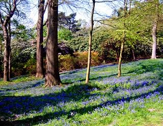 Sheringham Park | by lyna-1764