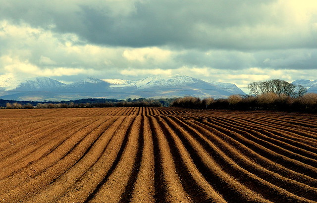 Ploughing On Towards Snowdonia North Wales