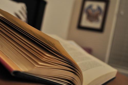 Evening Read | by ShardsOfBlue