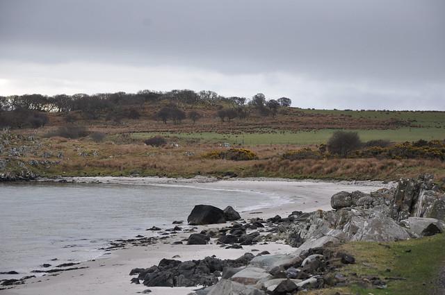 Wild Islay